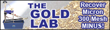 Gold Lab